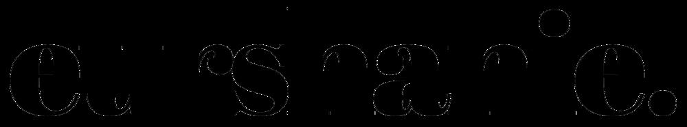 Logo Eurshanie