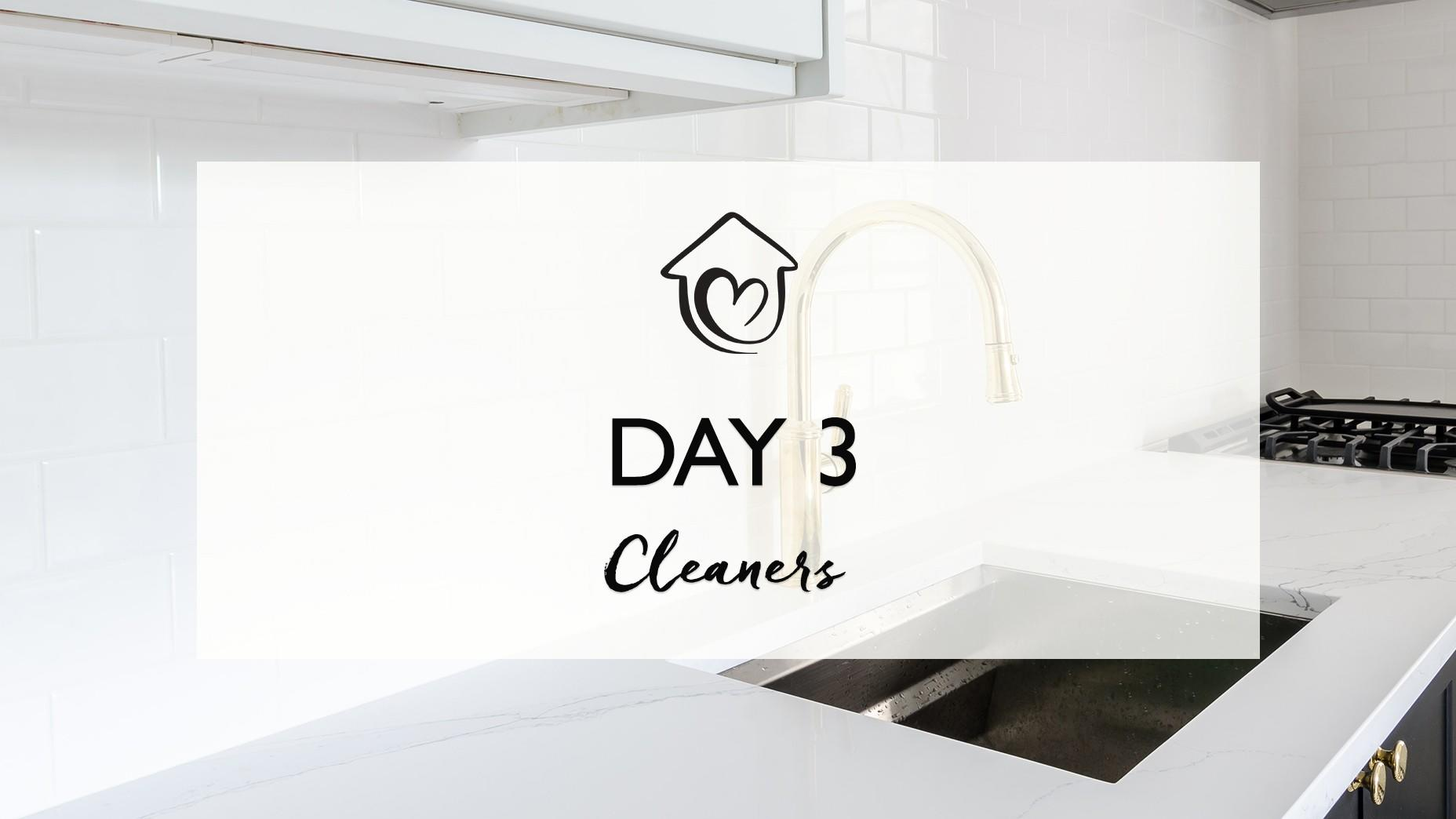 Day 3 - Cleaners