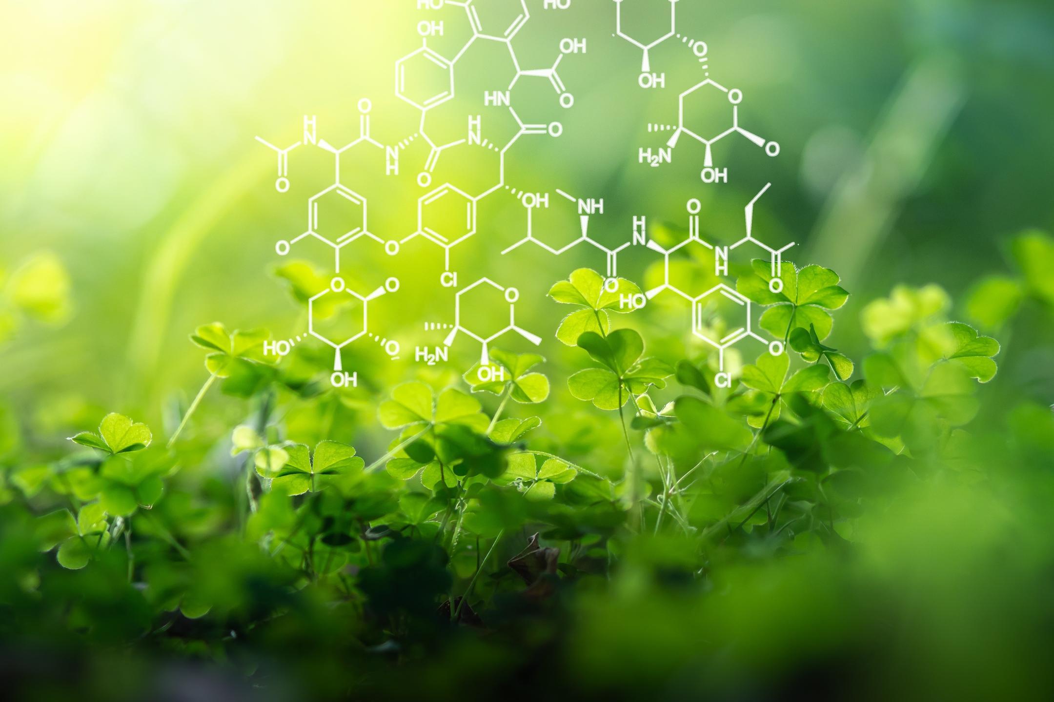 Grüne Pflanzen mit chemischer Darstellung der Fotosynthese