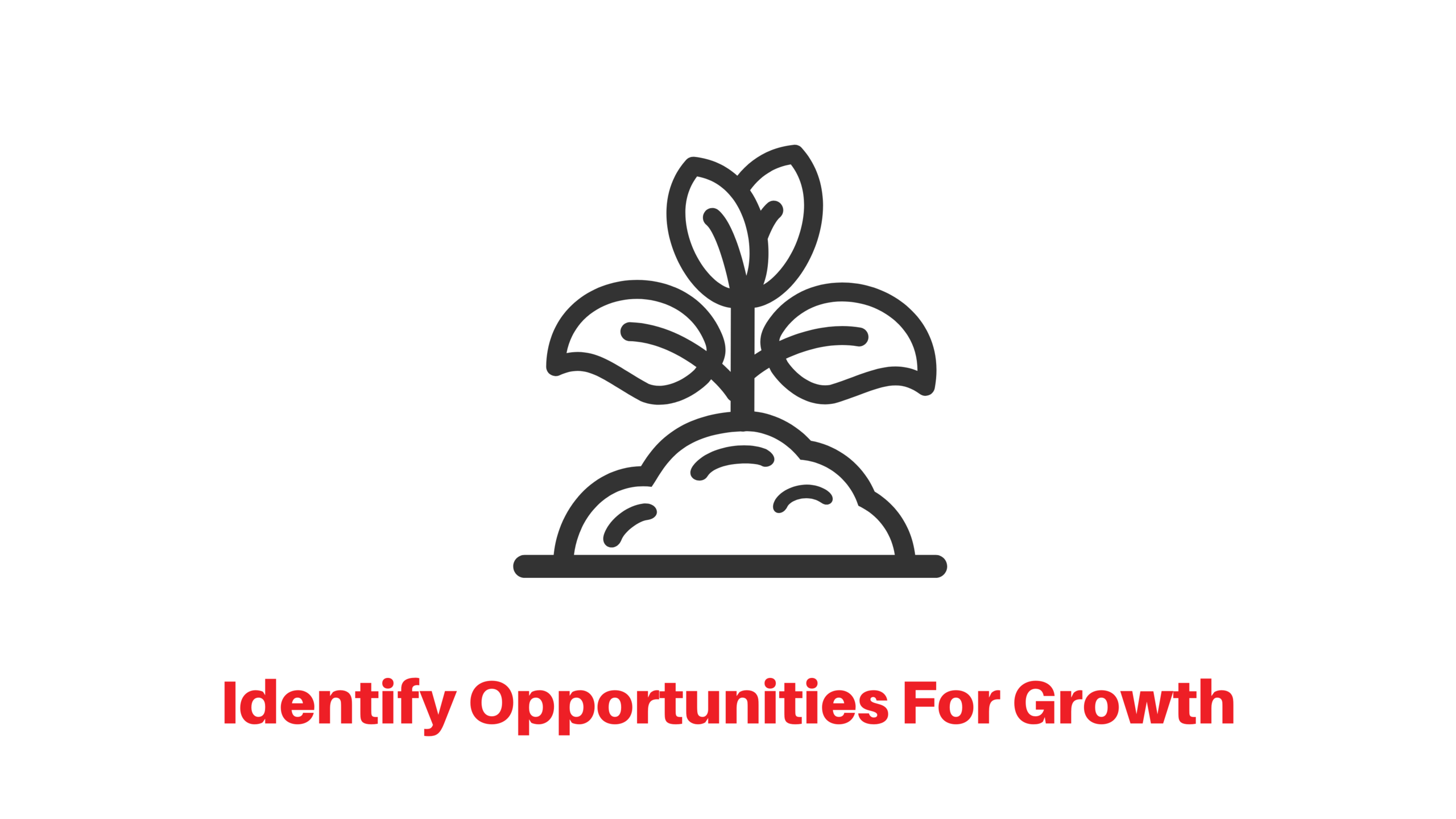 Identify opportunities for growth icon