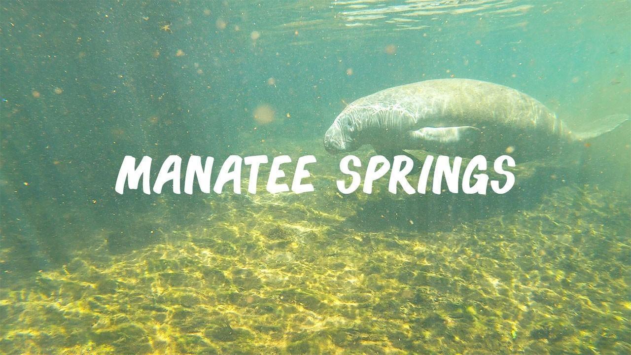Manatee Springs, Florida