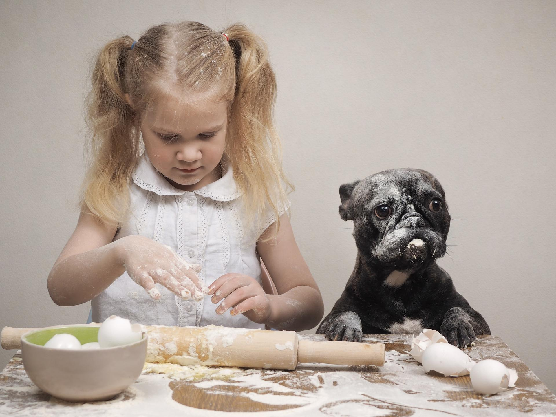 Grain Free Dog Treats