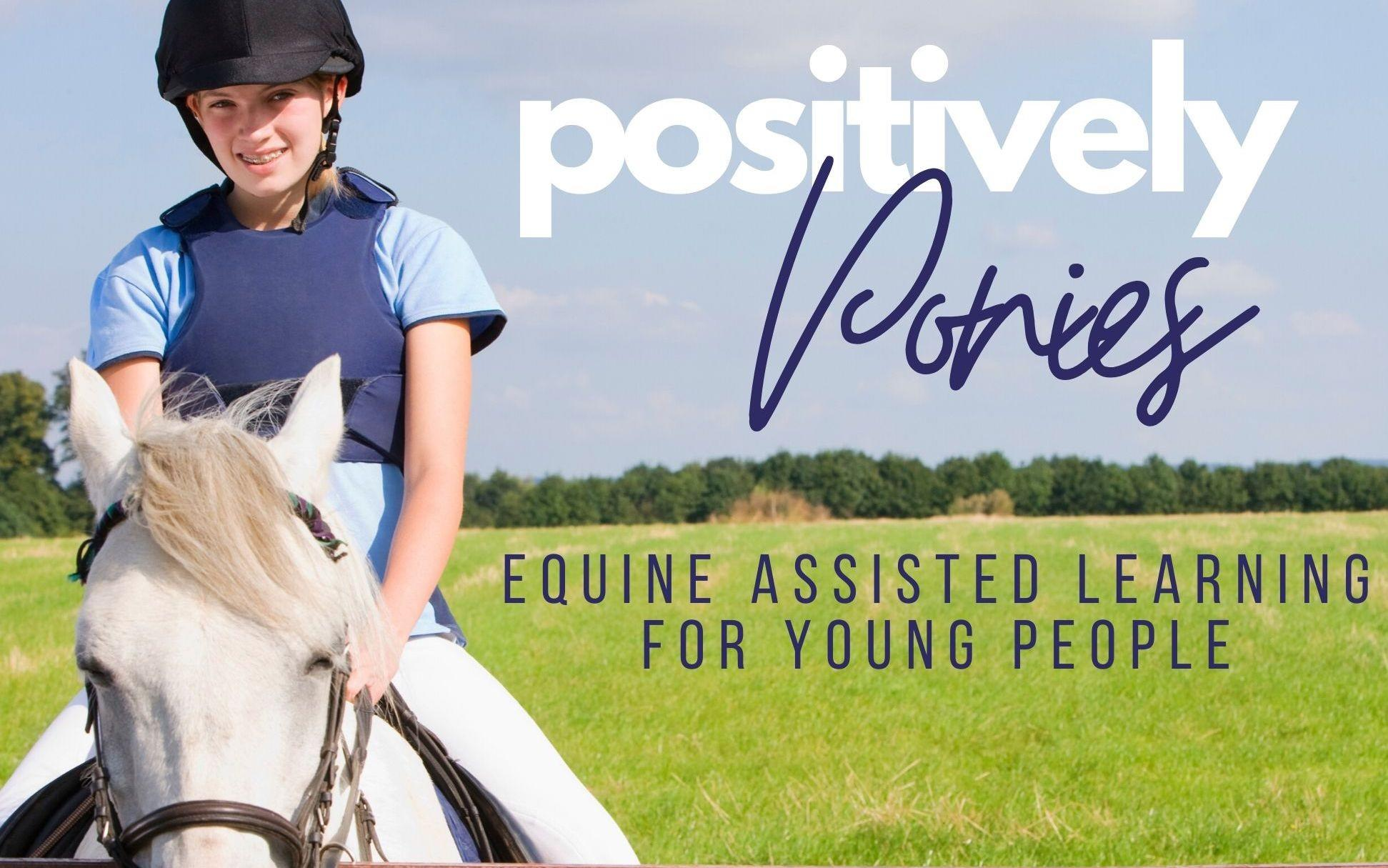 Positively Ponies Equine Assisted Learning at Rider Success Academy