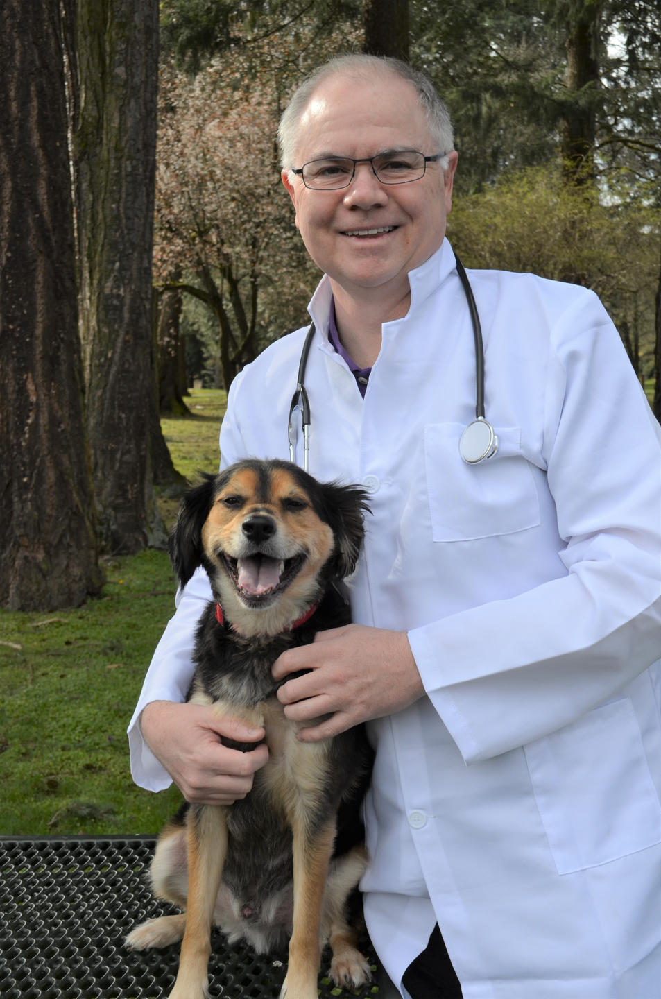 The Investment Doctor and The Investment Dogtor