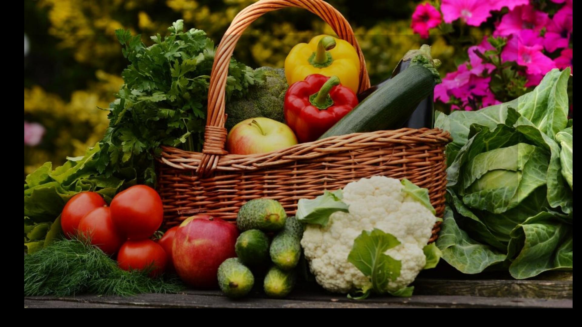 Basket of fresh garden vegetables