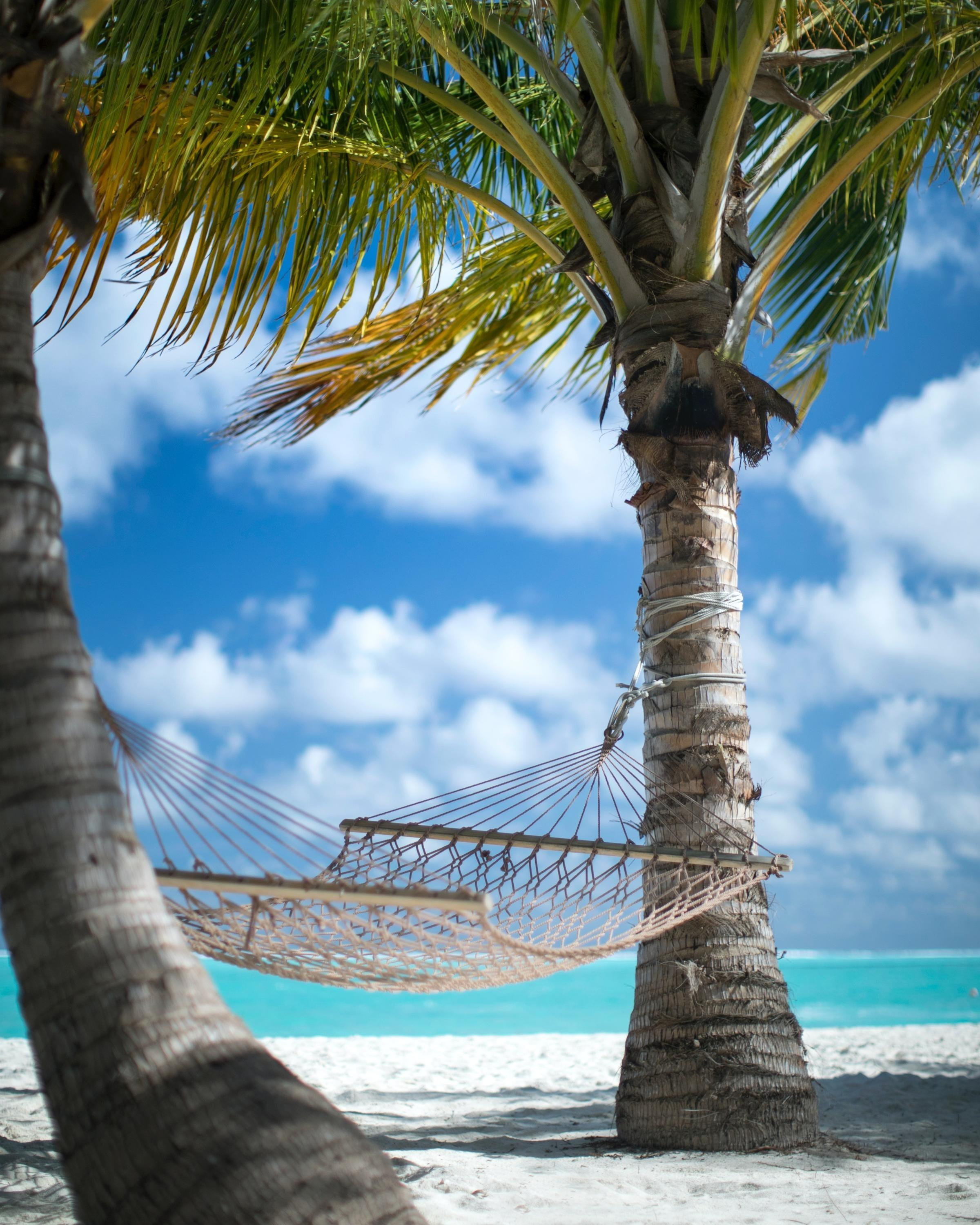 So, you took the big bold brave step to build a new business so you could work from a hammock on the beach!