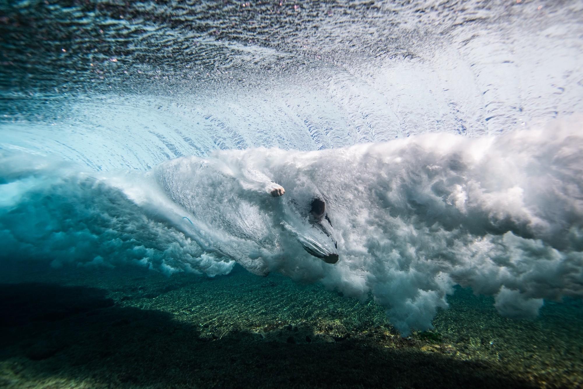 The Ocean Warrior