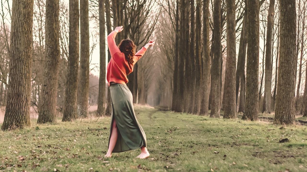Afbeelding van handen die een boom aanraken