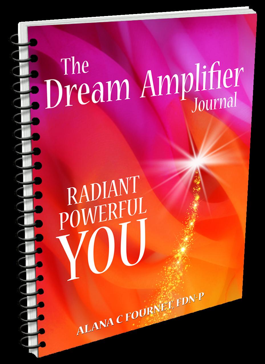 Dream Amplifier Journal