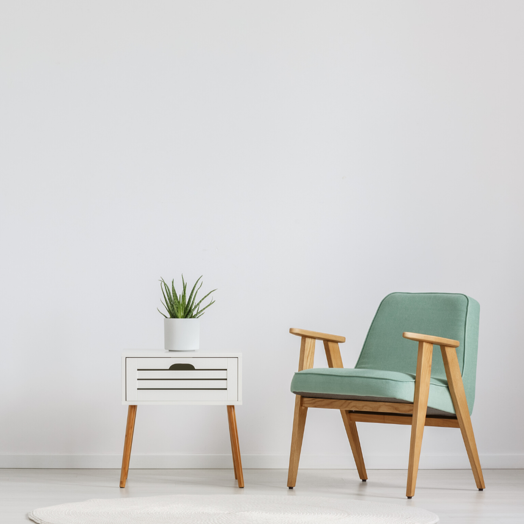 padded cushion chair, with side table, and aloe plant on top of table