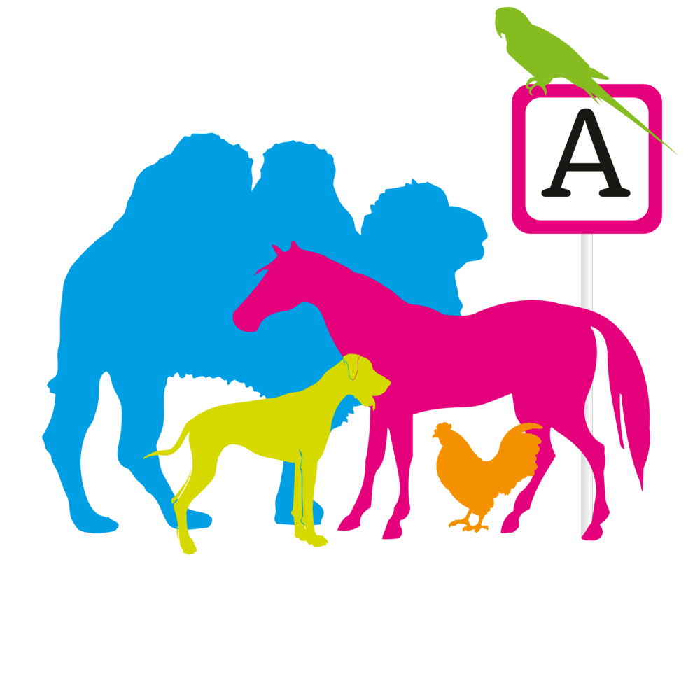 Animal Yes