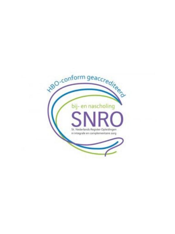 SNRO, Feng Shui Academie
