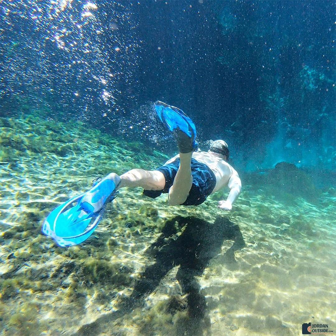 Snorkeling at Fanning Springs