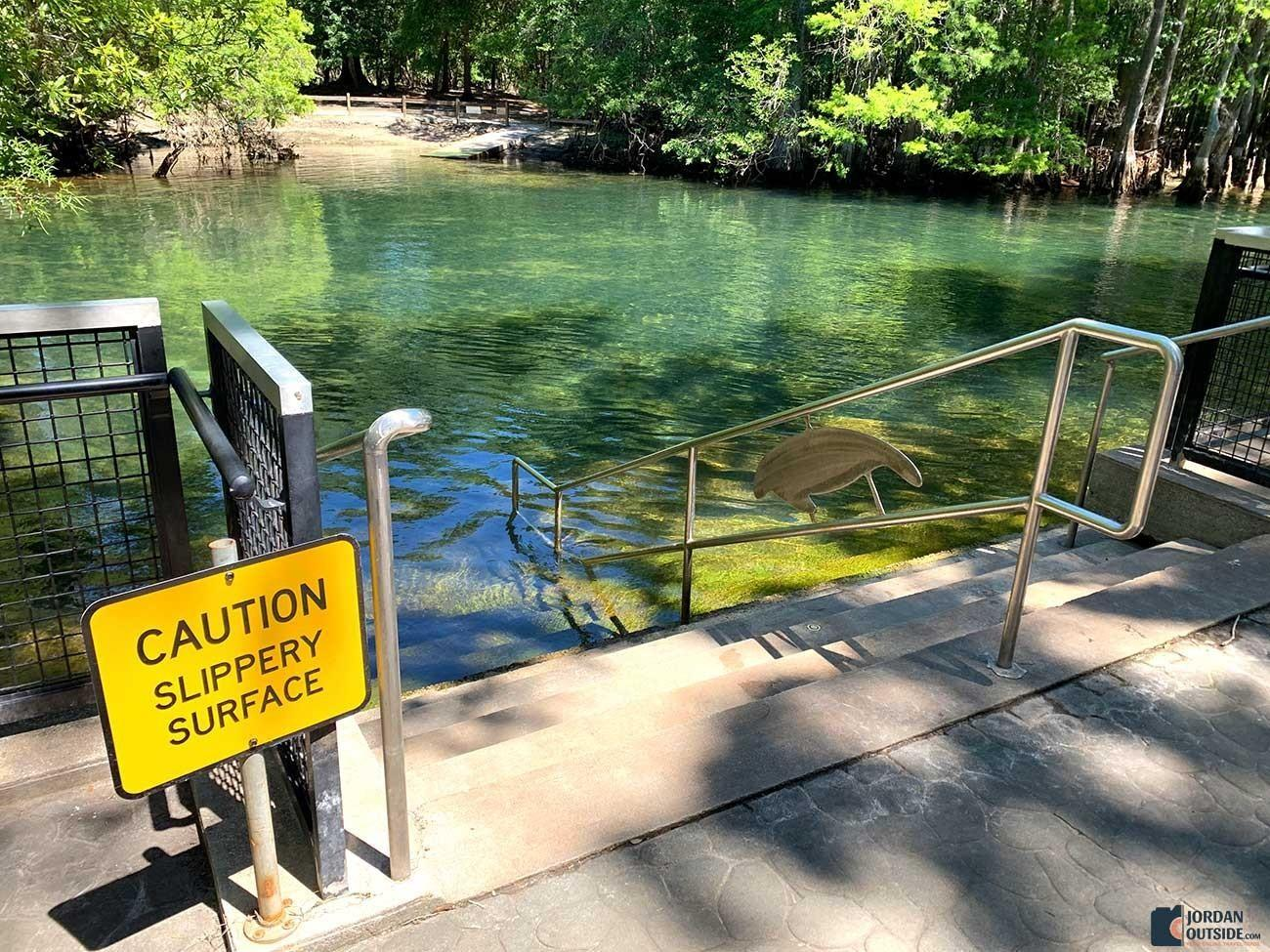 Manatee Springs Steps into the water