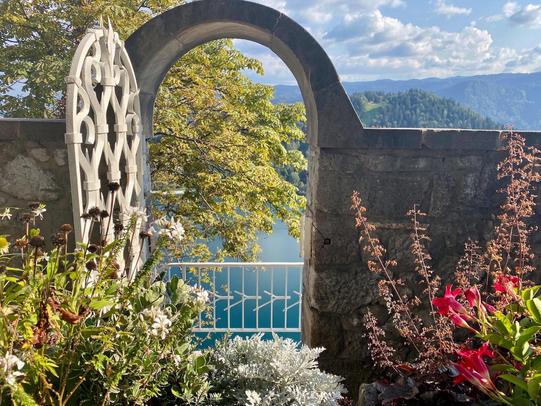 Business Accelerator & Visibility Retreats, Slovenia. Planet Peacock