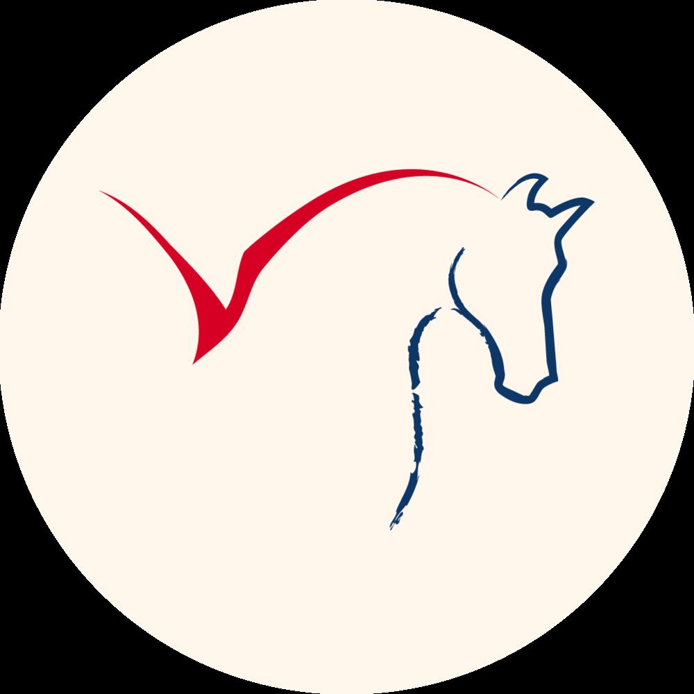 Hestenge Insider