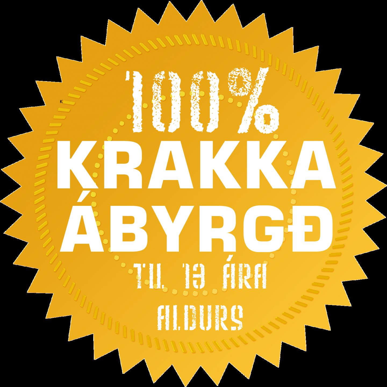 Krakkaábyrgð fylgir námskeiðinu Hraðlestrarkrakkar