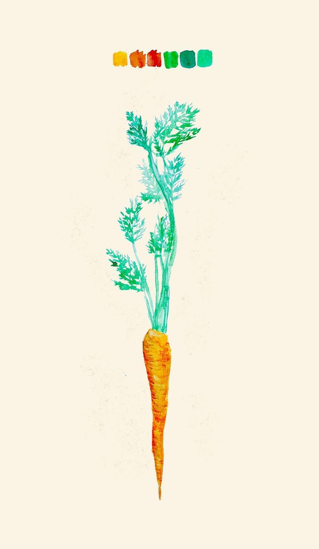 carrot artwork