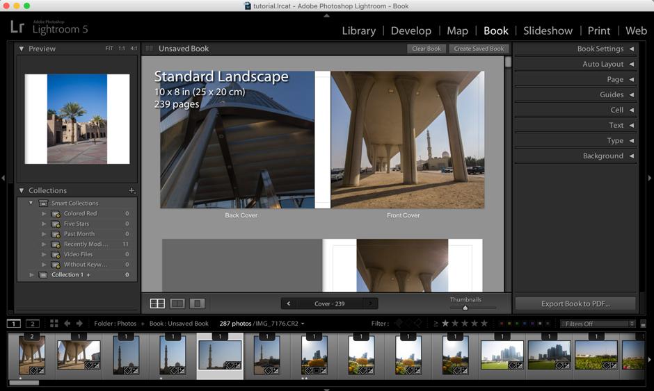 Screen shot of my images in Lightroom