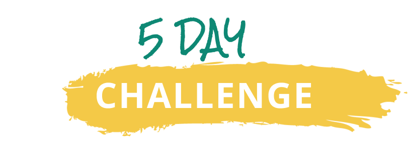 5 days challenge by ashley armstrong