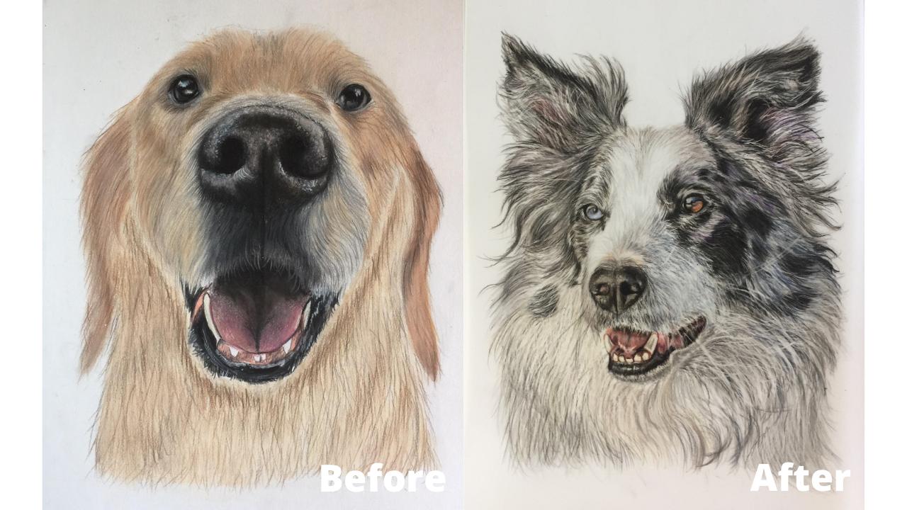 Zeynep Gur - Before and After - Patreon - Bonny Snowdon Fine Art