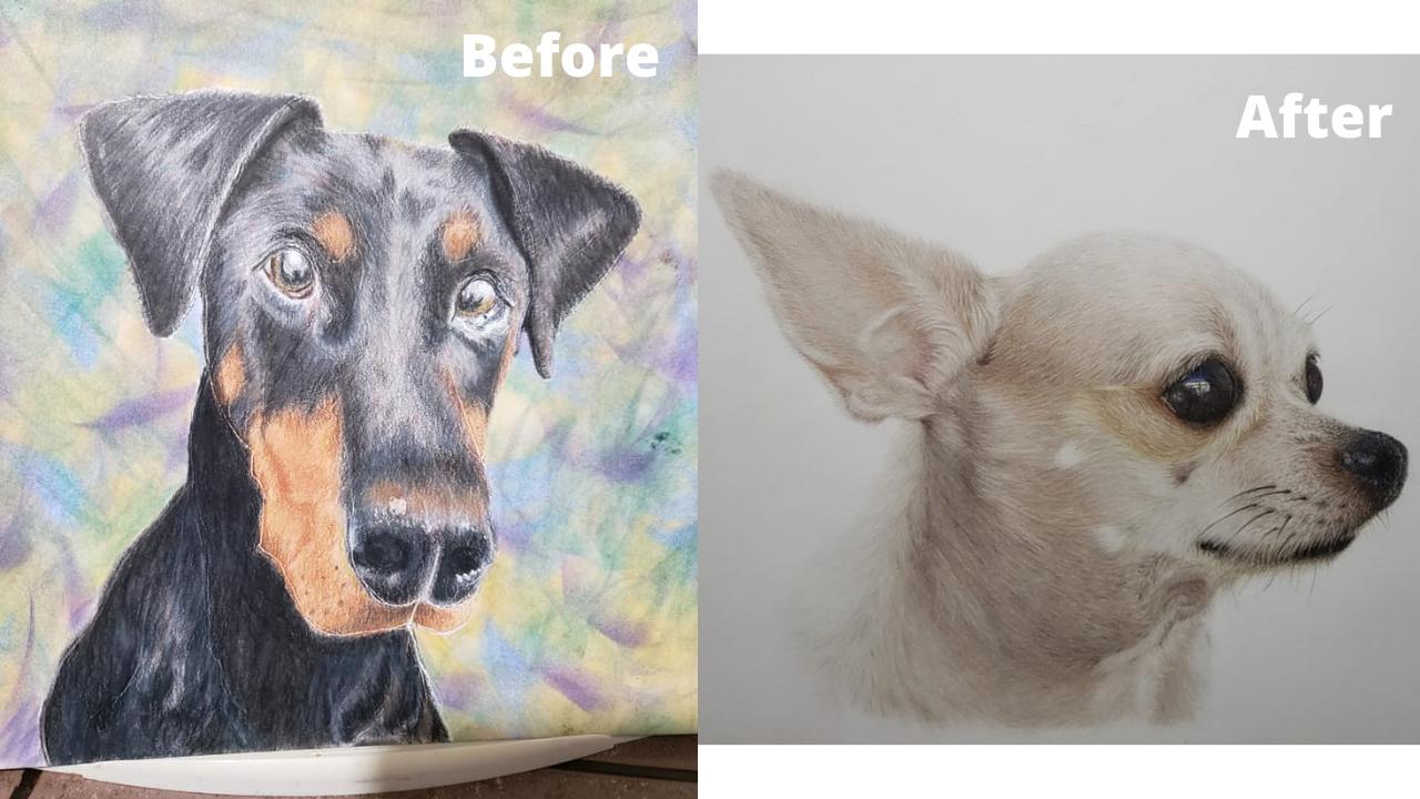 Ida Juliano-Eddy - Before and After - Patreon - Bonny Snowdon Fine Art