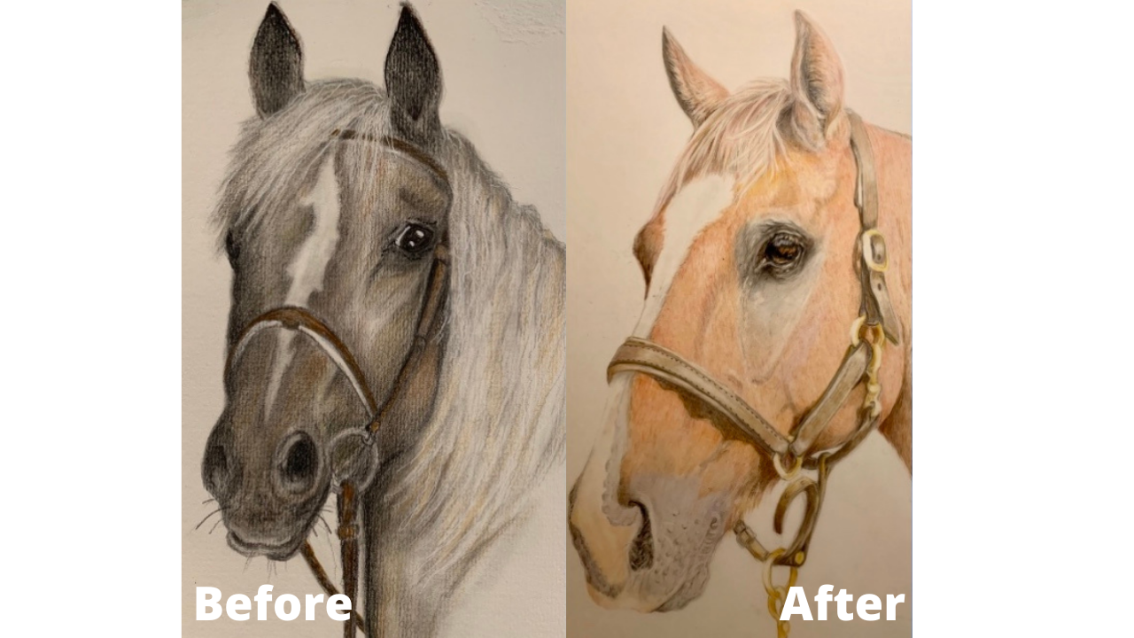 Joellen Conway - Before and After - Patreon - Bonny Snowdon Fine Art