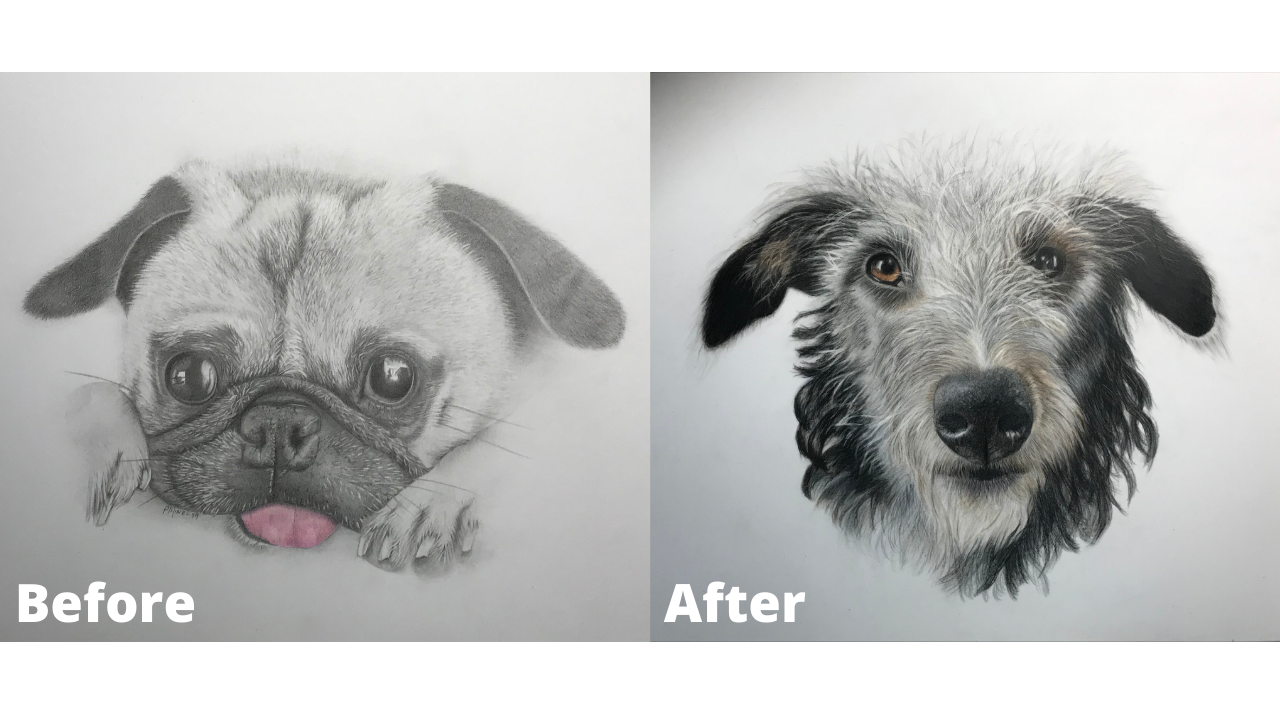 Pamela Mineo - Before and After - Patreon - Bonny Snowdon Fine Art