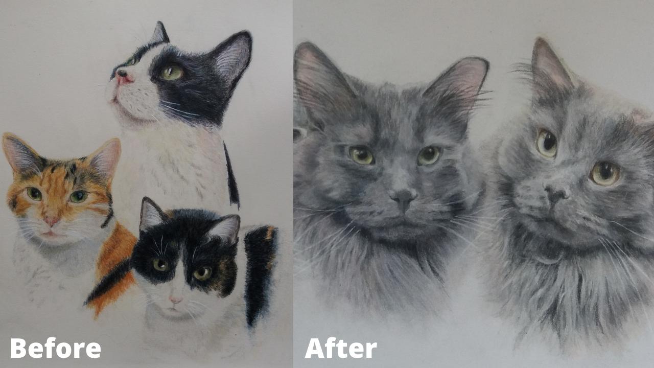 Judith Wysocki - Before and After - Patreon - Bonny Snowdon Fine Art