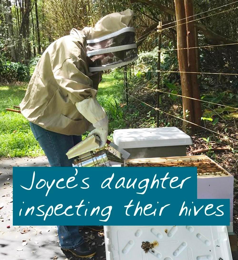 beekeeping for beginners student inspecting her beehive