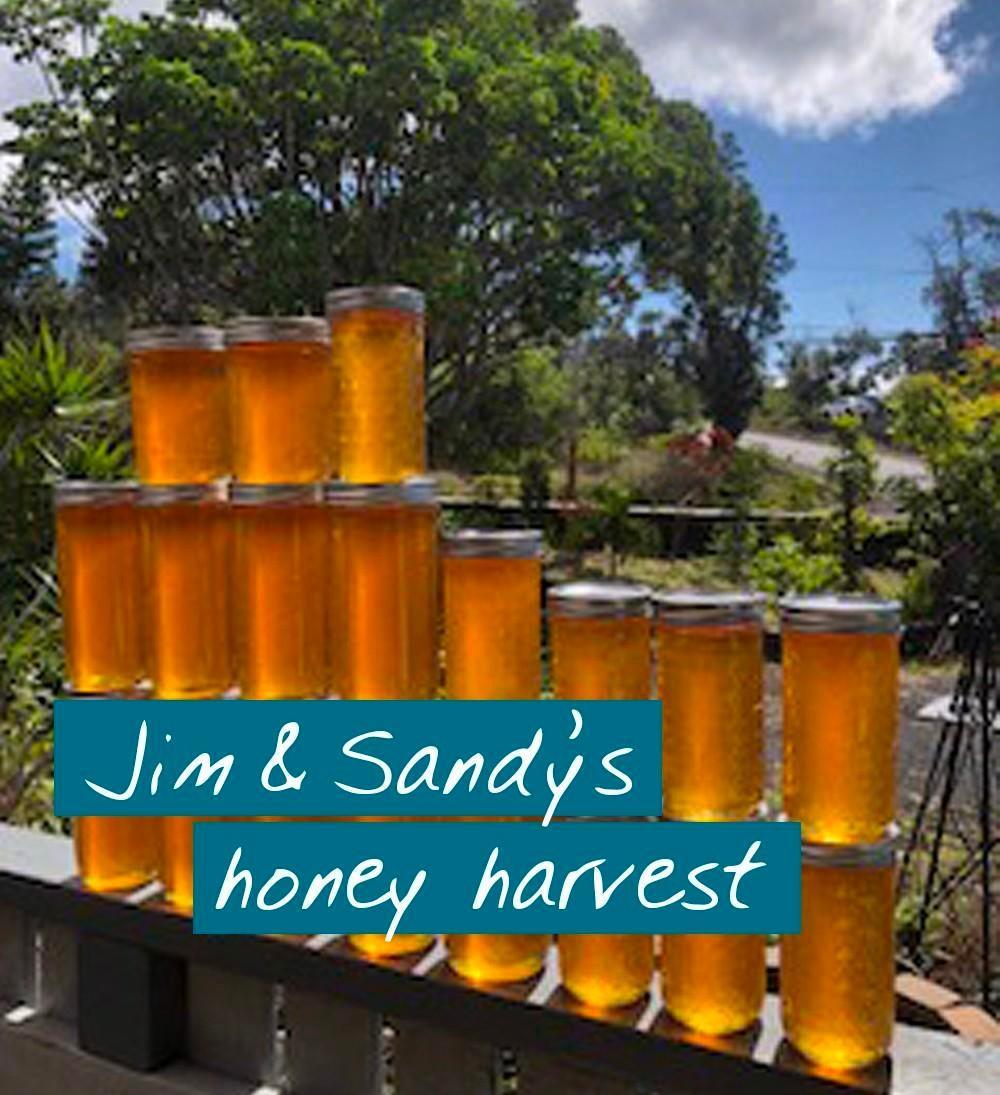 student of beekeeping course honey harvest