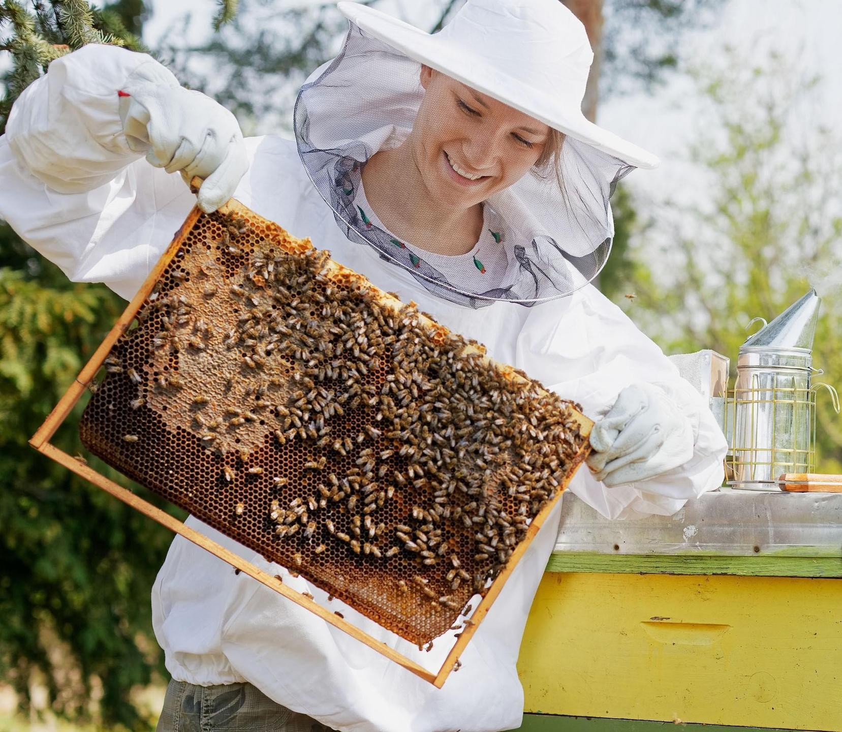 female beekeeper with a frame