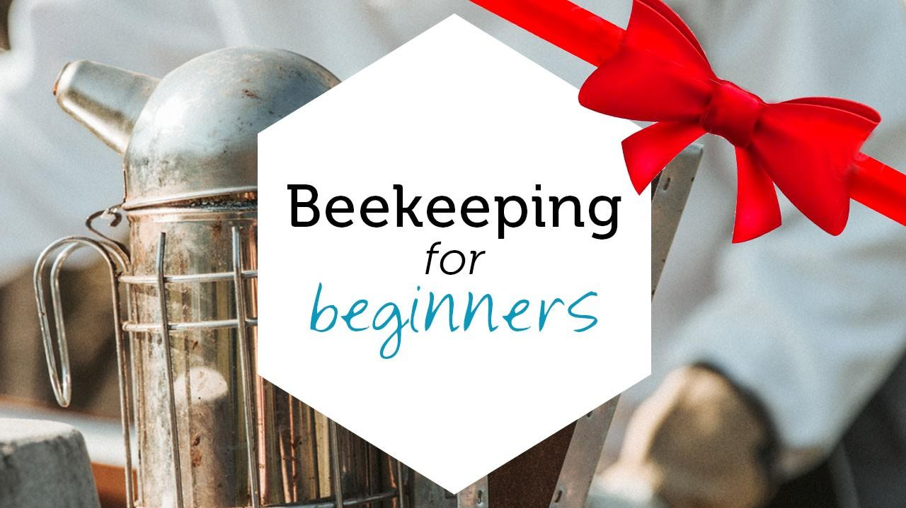 Beekeeping for Beginners product image