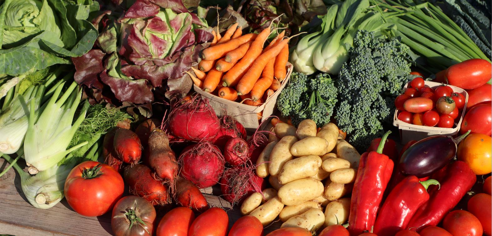 Abondance de légumes - Autonomie alimentaire