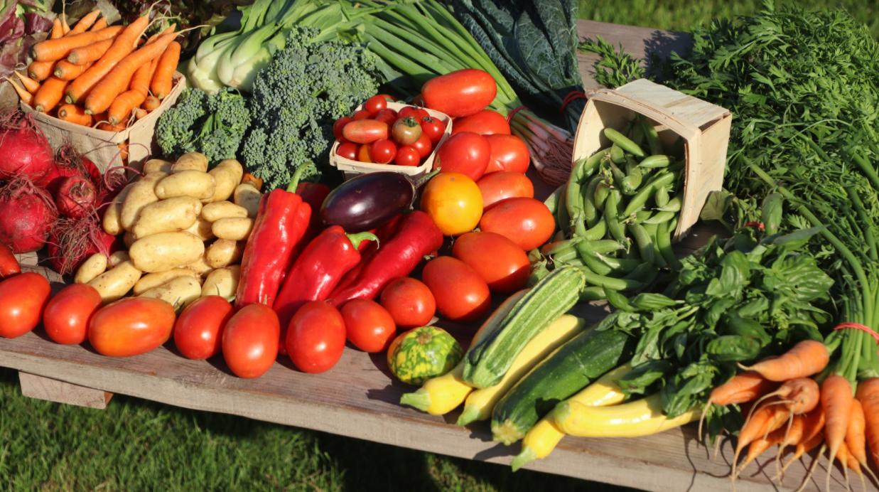 Légumes et récoltes abondantes