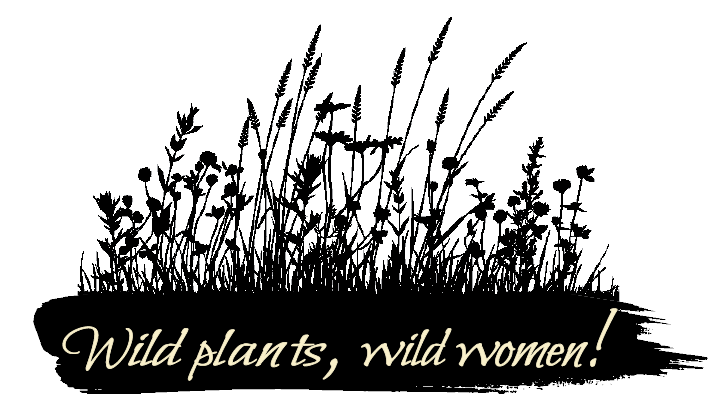 Bring wild plants into your everyday life and connect with the earth and seasons with this free guide.