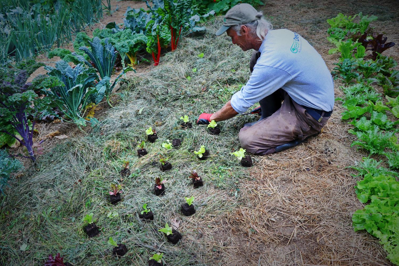 The Grass Fed Market Garden W Jim Kovaleski