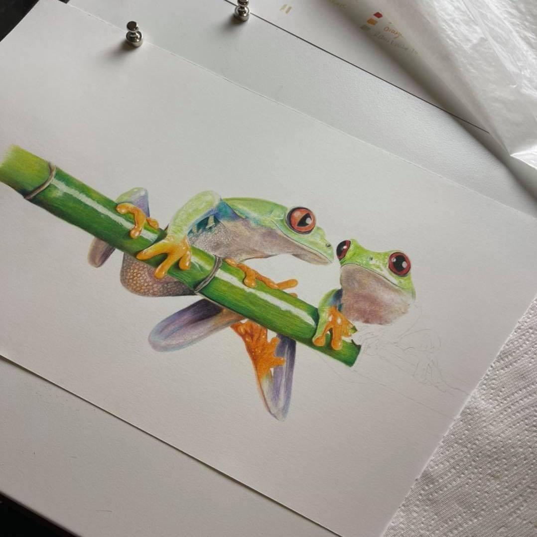 Tree Frogs - Tier Two - Patreon - Bonny Snowdon Fine Art