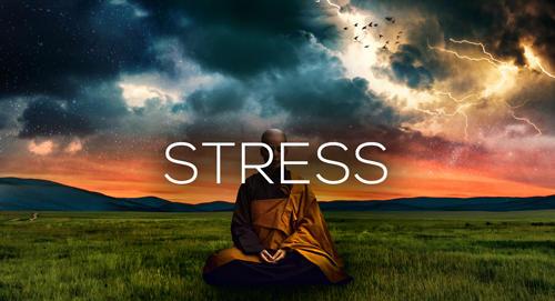 Stress Master