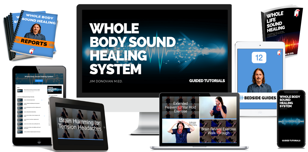 whole body sound healing system
