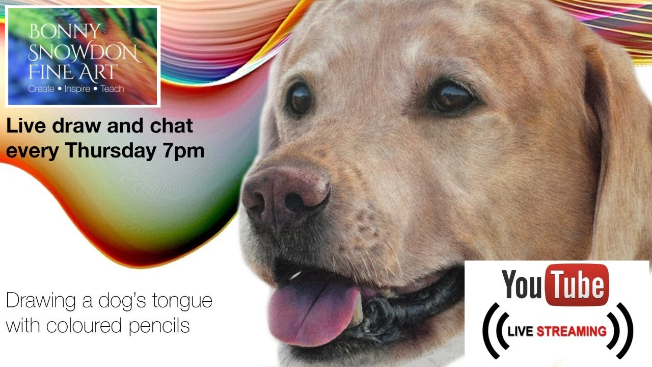 Drawing a Dog's Tongue with Coloured Pencils - Live Draw Along and Chat - YouTube Library - Bonny Snowdon Fine Art