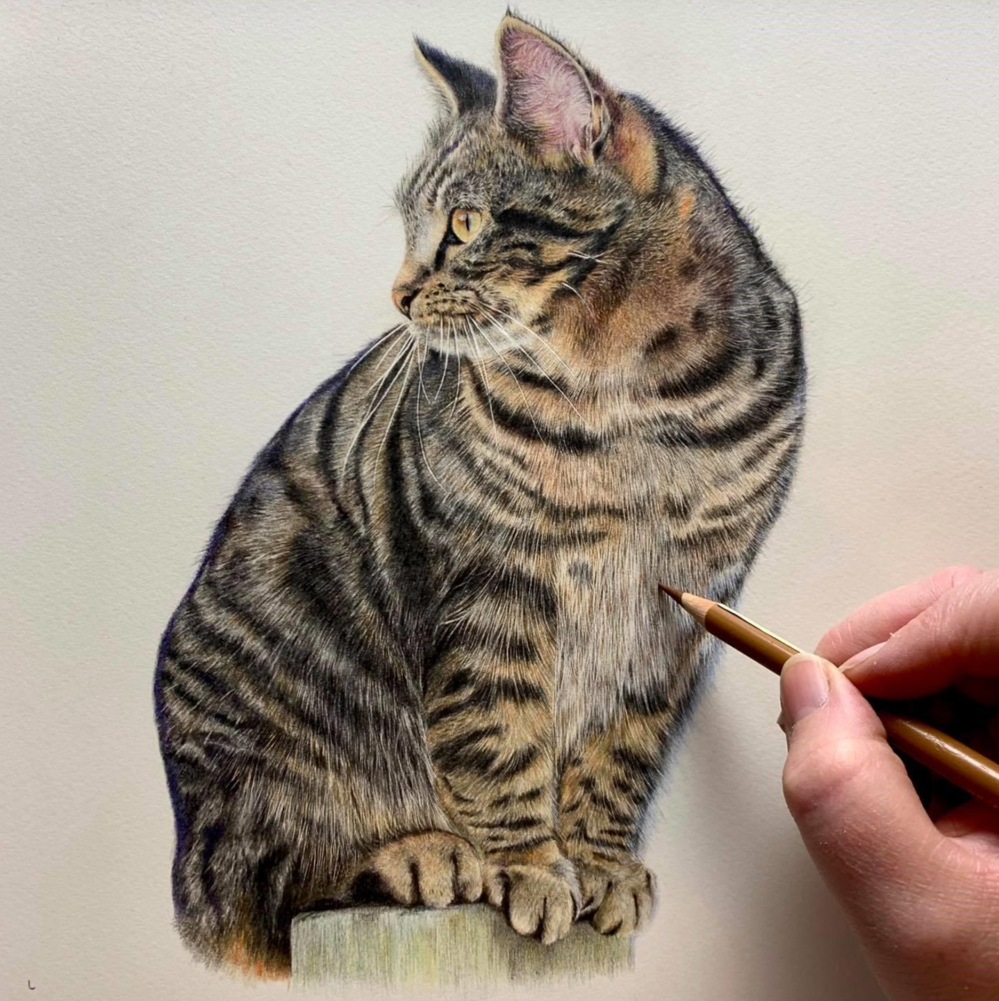 The Look Out - Patreon - Tutorial Gallery - Bonny Snowdon Fine Art