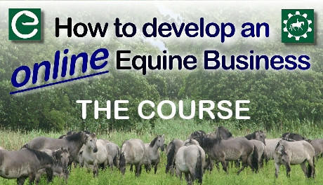 How to develop an online equine business - the course