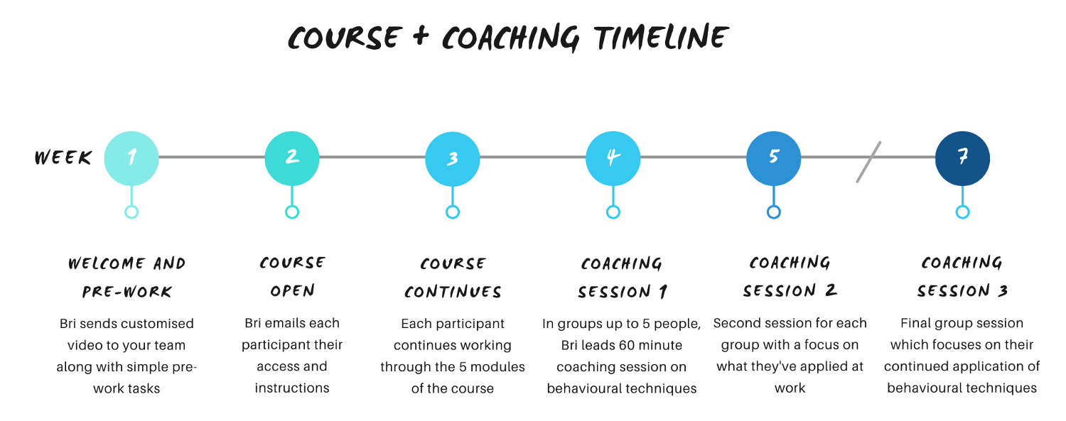 Timeline for course and coaching