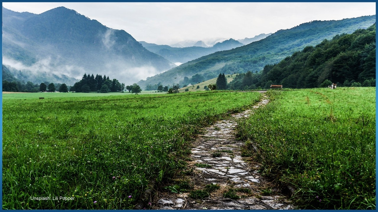 stone path in the middle of green field