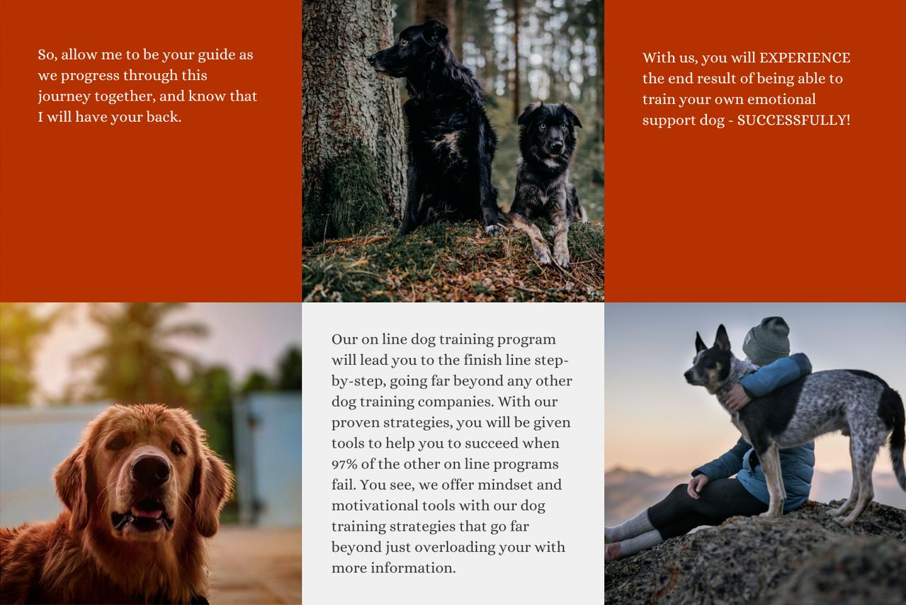 Coaching Canine Companions