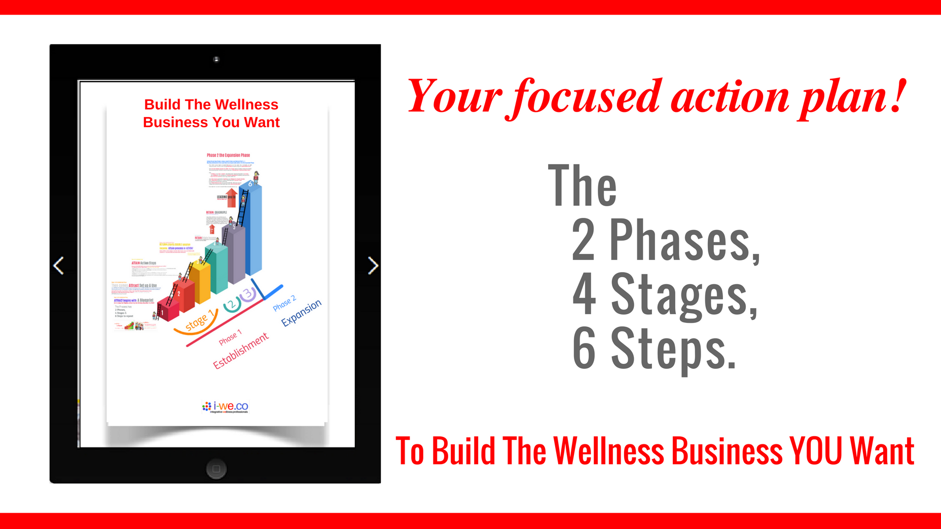 FOCUSED ACTION Steps:THE Blueprint to Build YOUR Wellness Business NOW