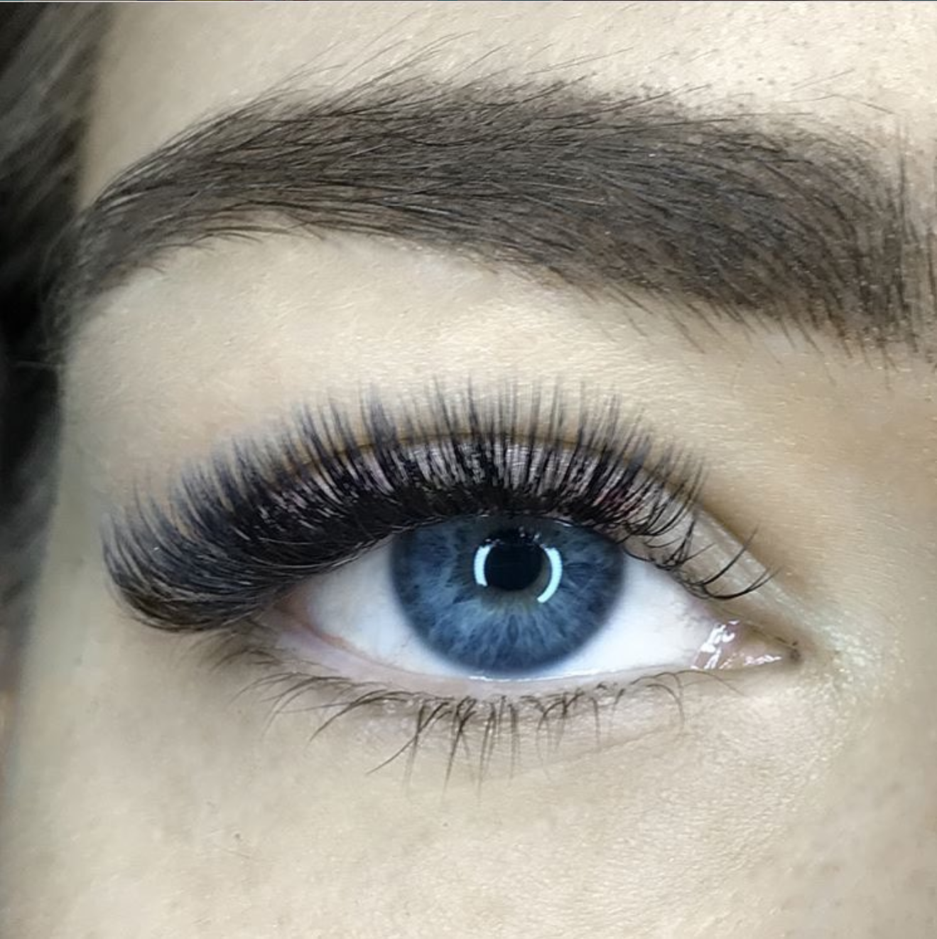 56a51a4d36a Stunning classic & volume lashes produced by LashJoy Academy students
