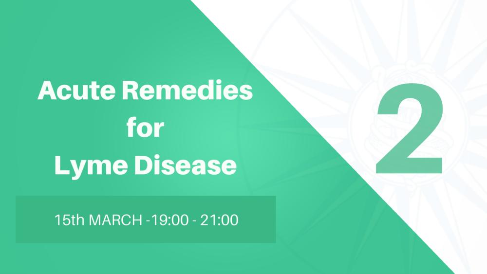 Robin Murphy - Lymes Disease Webinar Series