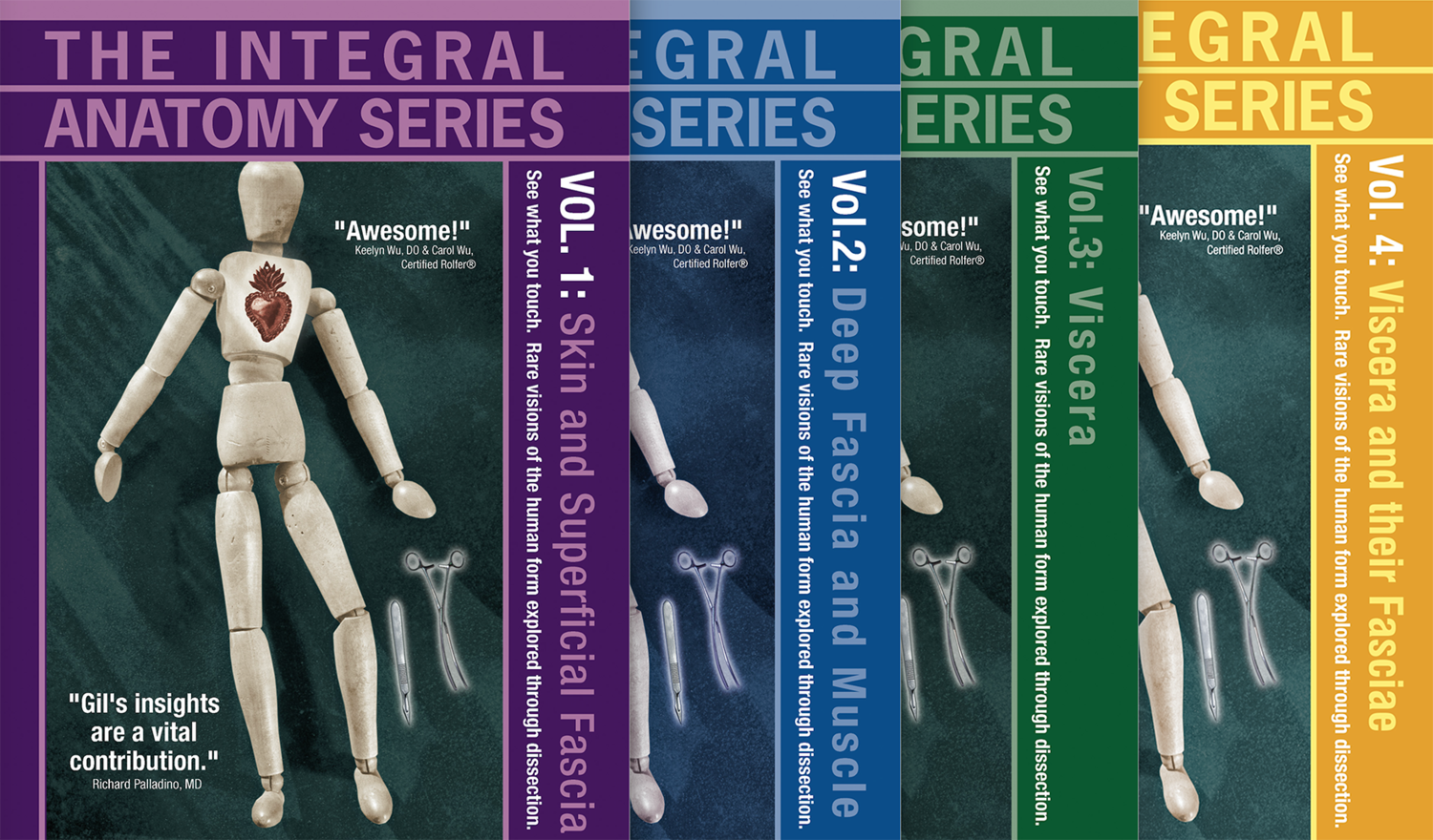 Integral Anatomy Online Courses And Dissection Workshops